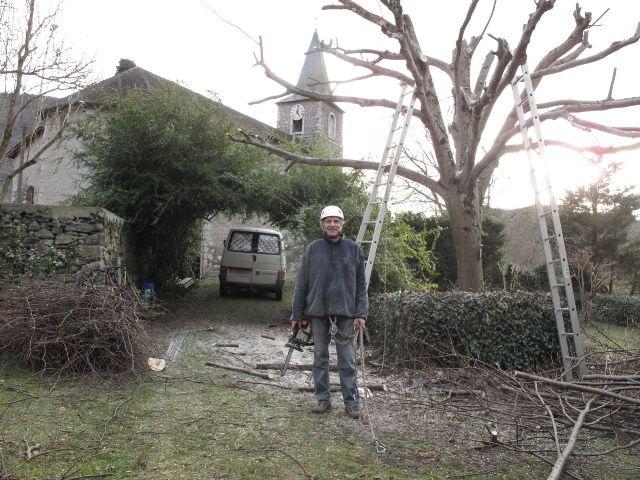 Les tilleuls du jardin de Villandry Chteau et jardins de Villandry